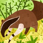 aardvark, anteater, Animal, and forest