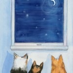 Dogs and night
