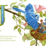 children's book, Animals, birds, Nature, alphabet, Watercolor, Lettering, and hand lettering