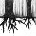 tree, trees, roots, forest, and woods