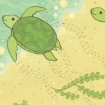 What Will Hatch? Sea Turtles! From