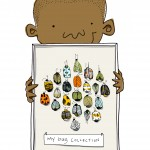 science, insects, beetles, collection, and bug