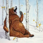 bear, winter, yawning, Aspen, trees, Animals, and seasons