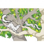 squirrels, trees, climbing, and branches