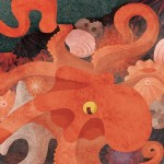 california, critters, Tidepools, octopus, crab, picture book, and illustration