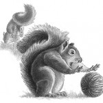squirrel, squirrels, animals, middle grade, and chapter book