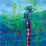 dragonfly, insects, Environment/Nature, Swamp, marsh, non-fiction, animals, and picture book