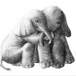Animal, Baby Elephant, Elephants, and Empathy
