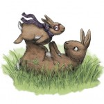 Bunny, Rabbits, and airplane