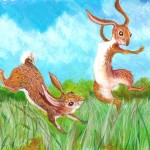 rabbit, Rabbits, spring, and meadow