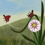 insects,   flowers, and Environment/Nature