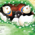 puffins, bird, and bed time