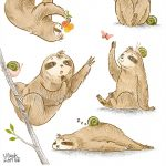 sloths, Environment/Nature, and Animals