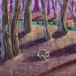 raccoon, in the woods,  forest, and deer