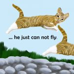 Cats and flying