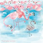 flamingos and Picky eating