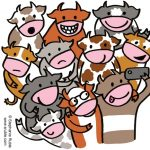 Cows, cow, selfie, and funny animal book