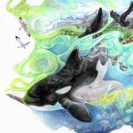 killer whale, Alaska, conference,  watercolors, and animal