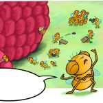 picky eater and insects