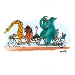 animals, animals/zoos, bike, Cute Animals, and funny animal characters