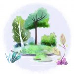 Environment/Nature, trees, and island
