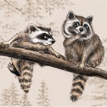 raccoons, Woodland Animals, and Animals