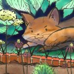 Animals: cats and garden