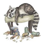 racoon, animals, animal illustration,  wildlife, anthropomorphism, children's picture books, and picture books