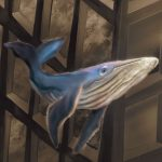 humpback whale, Environment/Nature, and book cover