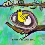 baby birds, educational, and board book