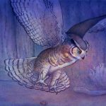 Great Horned Owl, Children's Nature Picture Book, and Environment/Nature