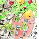 trees, growing, Brooklyn, children's gardening, and childrens book