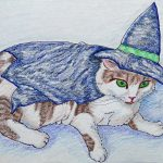 cats,  hats, witches, Halloween, and costumes